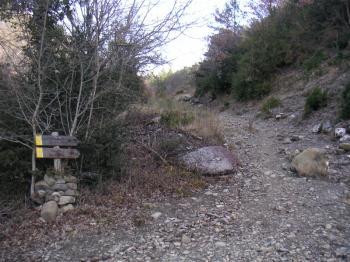 PICT0442